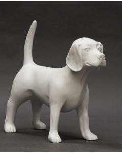 Bailey, mannekeng hund